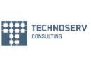 Technoserv Consulting